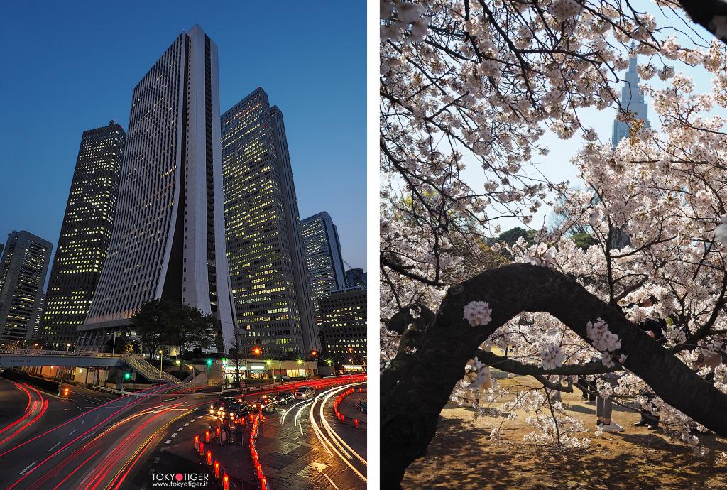 Atari/ Shinjuku/ Tokyotiger/Franca Zoli/Gyoen