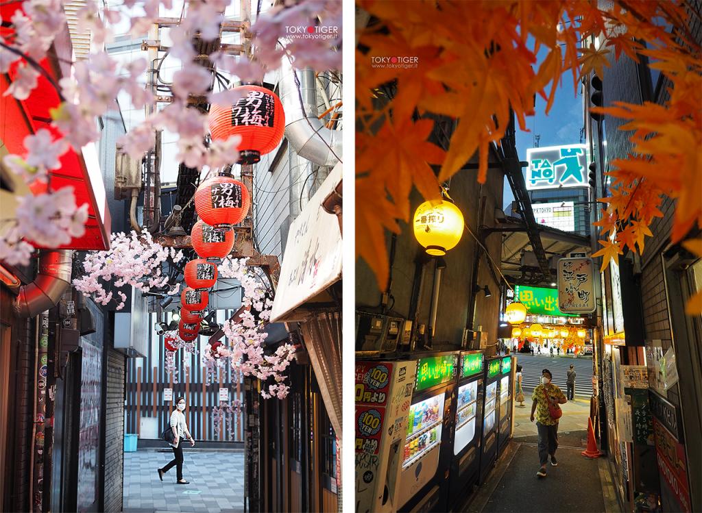 Tokyo Tiger/ Shinjuku/ Tokyotiger/Franca Zoli/i love Shinjuku/Gracery Hotel/ I love Shinjuku, I love Tokyo/omoide Yokocho